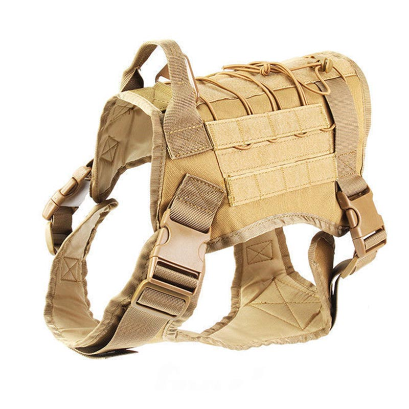 Dog's  Vest
