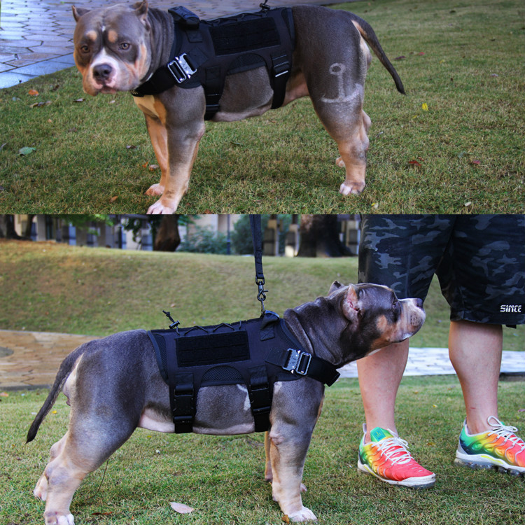 Tactical Dog Harness No Pull Pet Harness Vest Clothes